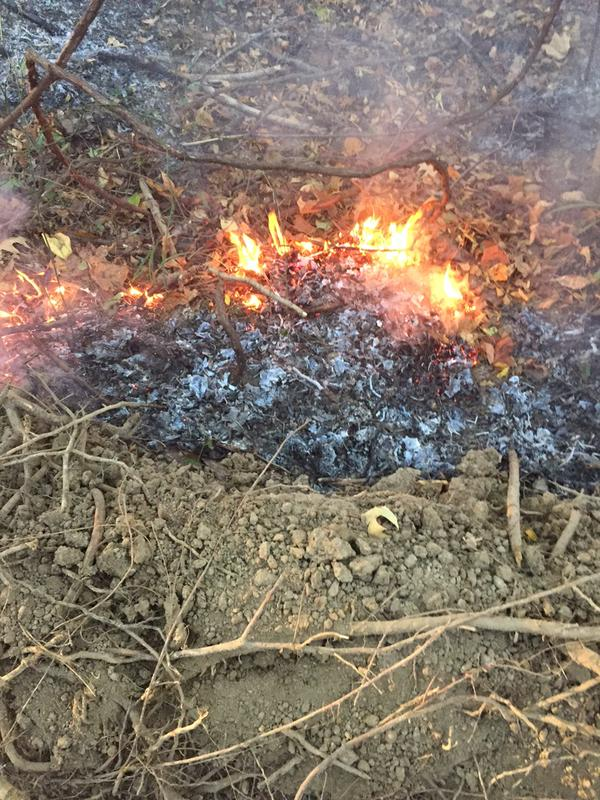 Rankin County grass fire_80144