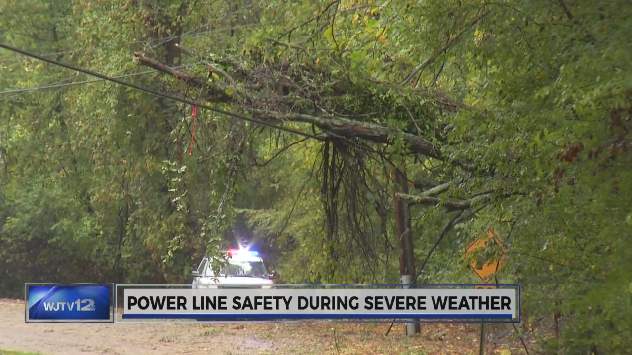 downed power line_95776