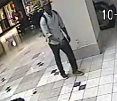 Ridgeland PD burglary suspect 1_96831