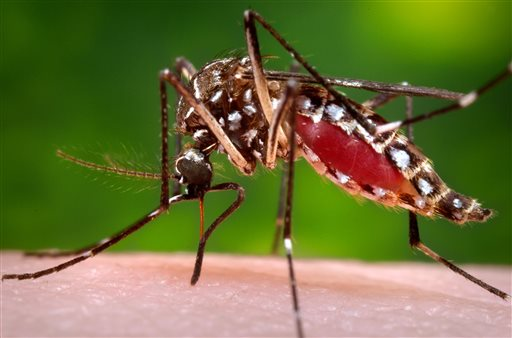 MSDH reports new West Nile cases