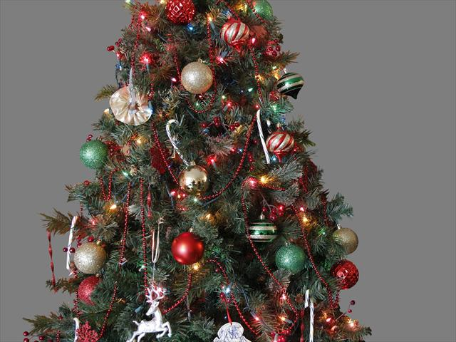 ap_11122102284 Christmas tree by AP Images_254591