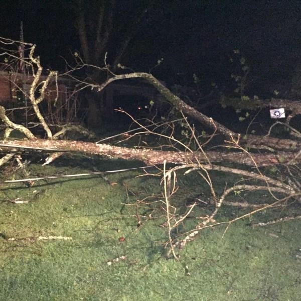 Storm damage 03272017 by ANdrew Nomura WJTV IMG_1255_304658