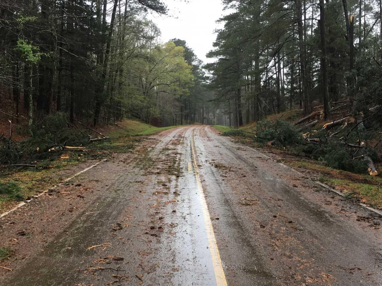 Natchez trace storm debris_1522337988917.jpg.jpg