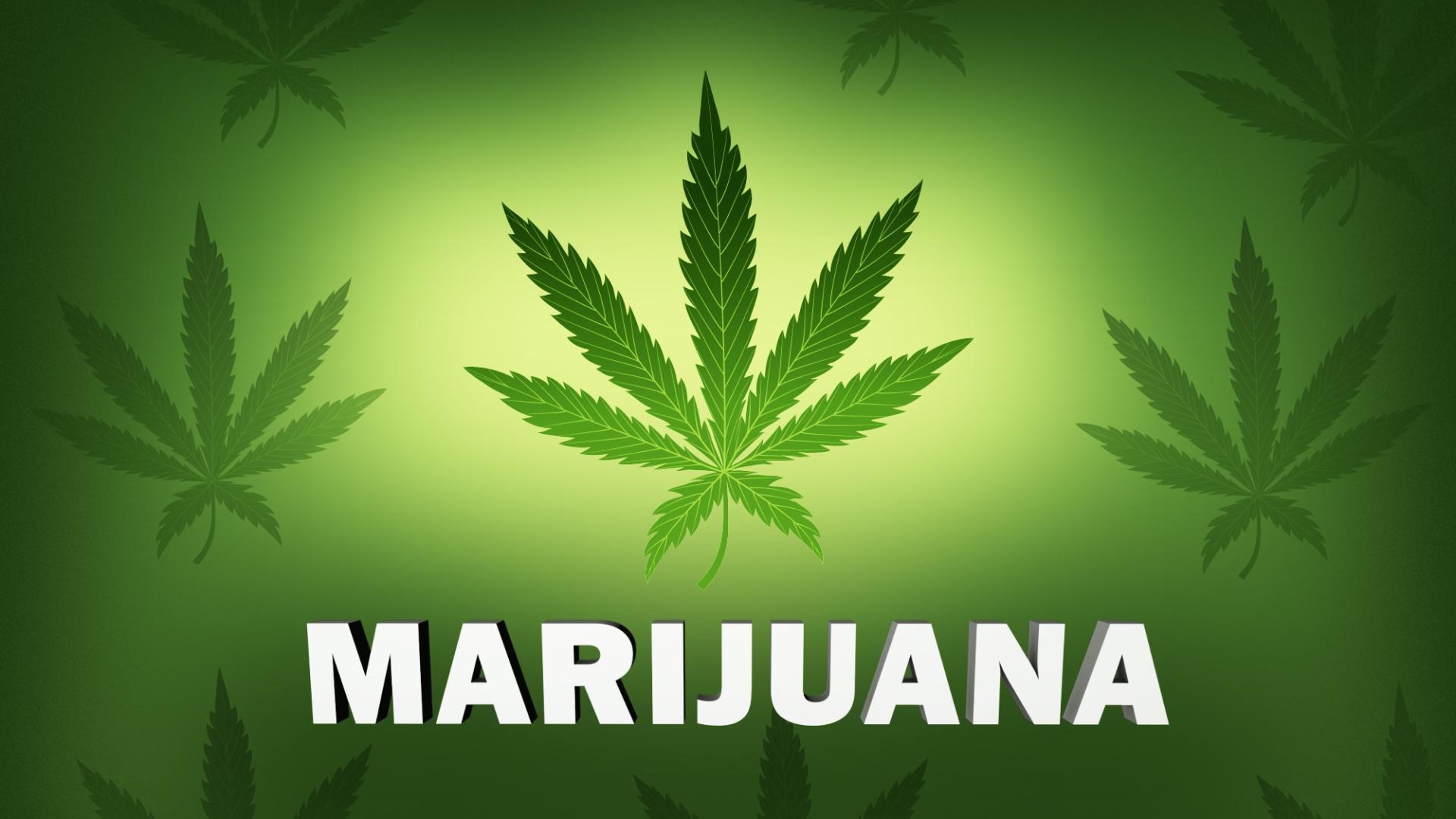 Marijuana_1540225226014.jpg
