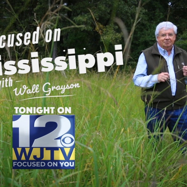 Focused On Mississippi with Walt Grayson