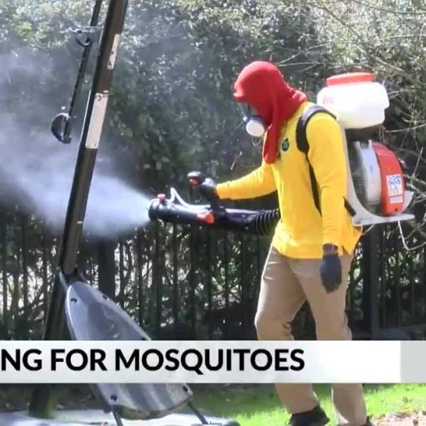 Katey_Roh__Spraying_for_mosquitoes_14_20190315221835