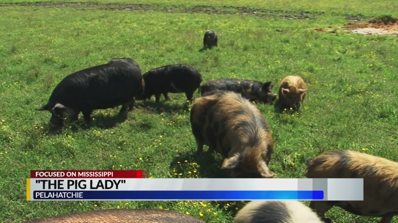 The pig lady