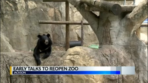 City and Zoo leaders work on plans to reopen facility