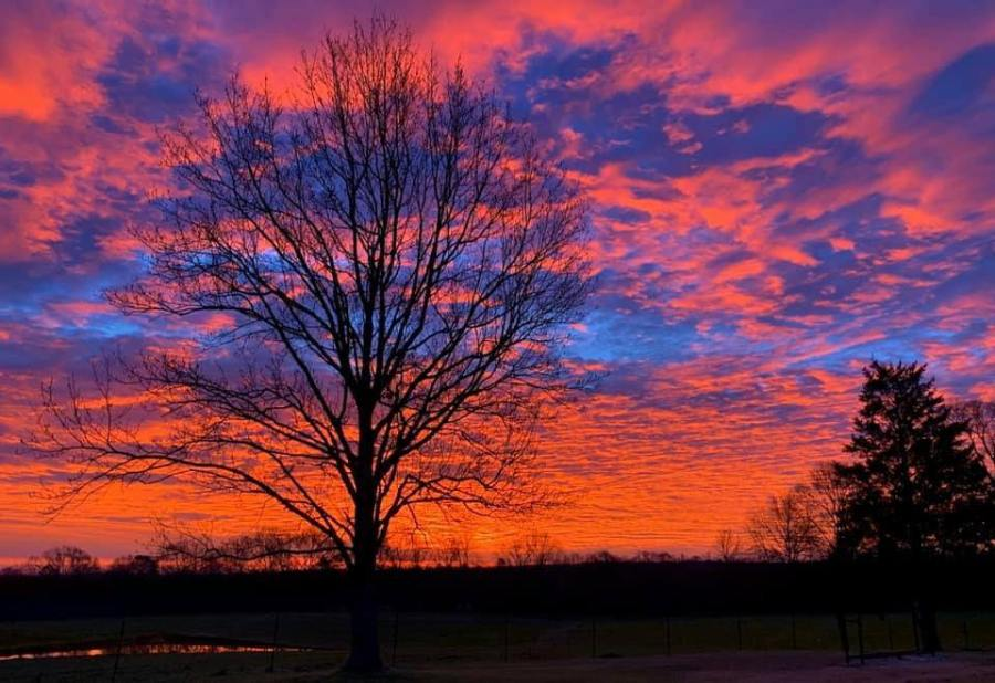 #2 WALTHALL COUNTY SUNRISE, January 22nd (Credit: Dannie McKee)