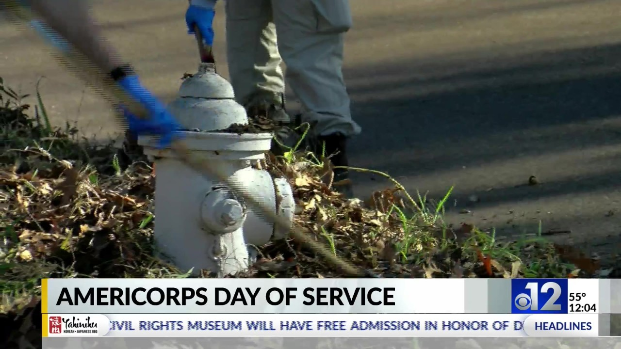 Volunteers honor MLK's legacy with Day of Service | WJTV